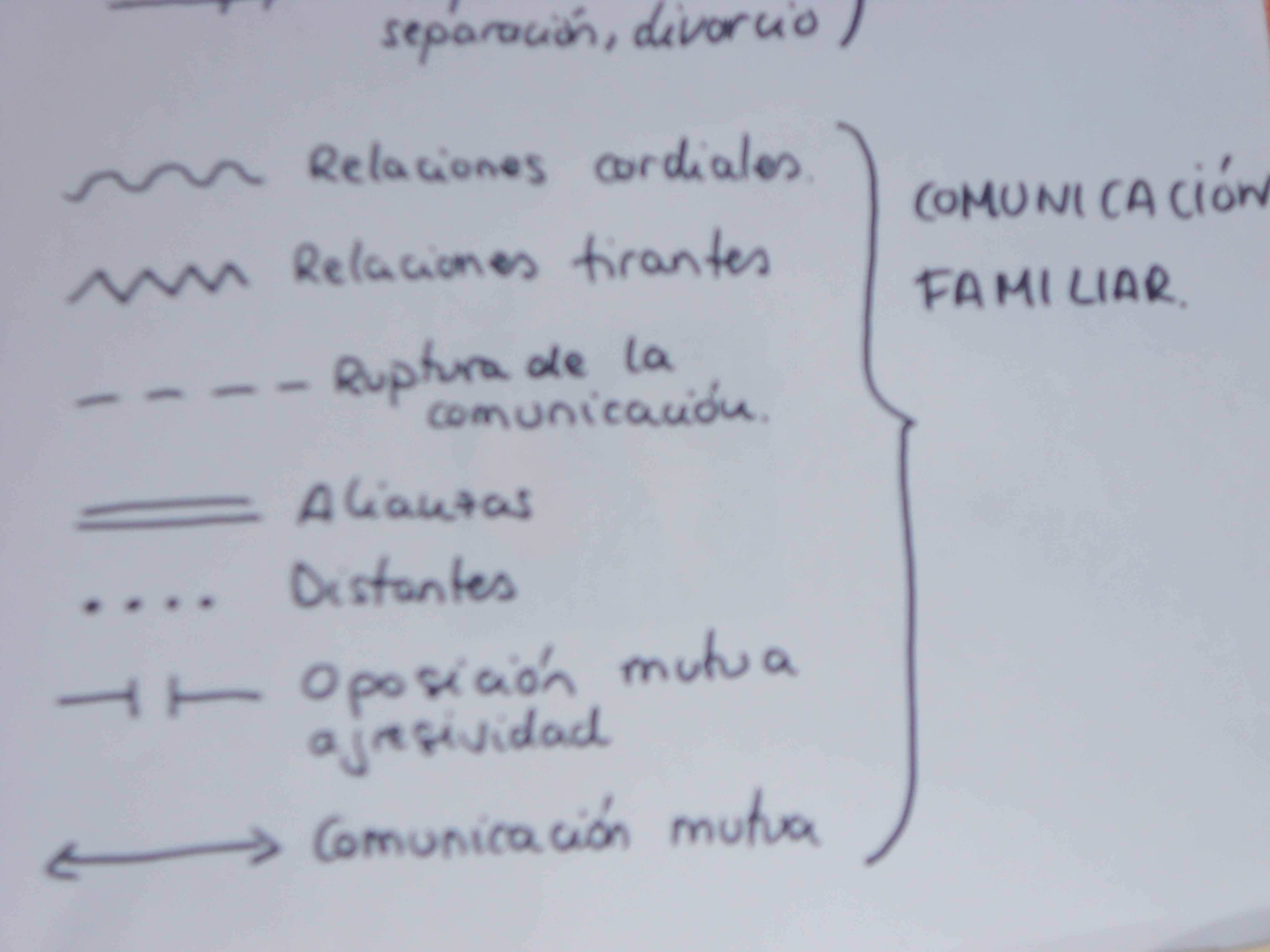 Trabajo social pr ctico el genograma las cuatro piedras angulares - Esquema caso practico trabajo social ...